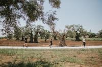 Borgo Egnazia Halb-Triathlon: Teilnahmegebühr bleibt bei 190 Euro