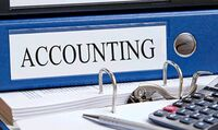 Professional and Experienced Accounting Services