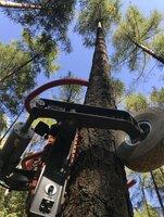 Übersicht über die Forstgeräte