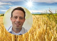 showimage AGRAVIS-Marktanalysen: Chilla checkt!