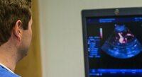 Tierarzt für Baden-Baden: Bei Hitze Symptomen zum Notdienst