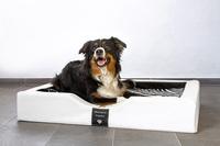 DoggyBed - das einzigartige GEL - Hundebett!