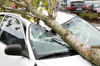 Wer haftet für Sturmschäden am Auto? - Verbraucherinformation der ERGO Group