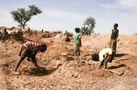 ?Weltkindertag: Kinderarbeit an der Tagesordnung