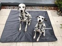 NEU- Anti-Haar Tierdecke für S-XL Hunde+Katzen