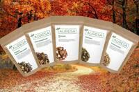 Wärmend, lecker und online - Außergewöhnliche Teesorten für den Herbst