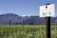 """Pressemitteilung von Napier Vineyards: Mit gutem Gewissen genießen - Projektwein """"14 Homes"""""""