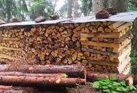Fichte als Brennholz: Die preisgünstige Alternative