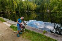 Tierisch gut verreisen: Mit dem Hund in die Ferienregion Nationalpark Bayerischer Wald