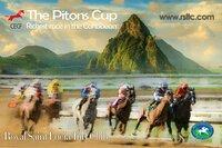 CECF Saint Lucia - das erste internationale Pferderennen auf der Karibikinsel