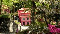 Madeira-Wanderurlaub mit Wohlfühlfaktor hoch drei