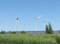 Windenergie muss deutsche Schlüsseltechnologie mit heimischer Produktion bleiben