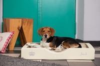 NEUHEIT - Kleine GEL-Hundebettchen
