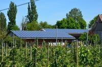 Photovoltaik für Unternehmen - Kosten sparen