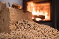 Wissenschaftler warnen: Holzpellets sind eine Bedrohung für das Klima