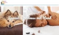 Wellness mit Hund: Verwöhnhotels auf hunde-urlaub.net