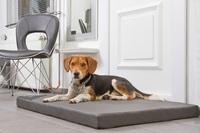 DoggyBed - Orthopädische Hundematte