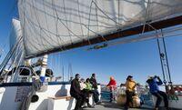 Wenn die Arktis aus dem Winterschlaf erwacht: Hike & Sail in Nordnorwegen