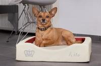 DoggyBed - Gesunde Hundebettchen 2020