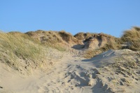 Urlaub an der Nordseeküste im exklusiven Ferienhaus