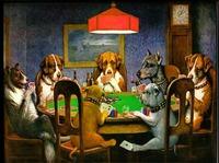 Mit Poker-Domains haben Sie bei Poker-Themen immer ein gutes Blatt