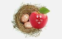 fruiton liefert Ostergrüße bundesweit ins Büro