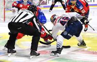 mybet steigt als exklusiver Sportwettenpartner bei der Deutschen Eishockey Liga ein