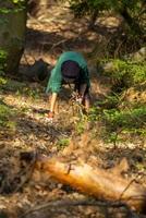 20.000 Stunden für den Wald - jetzt erst recht!