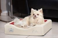 Neue Hundebettchen mit gesunder Liegefläche