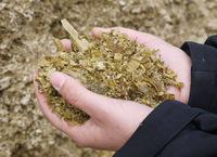 AGRAVIS Raiffeisen AG: Wie biologische Siliermittel wirken