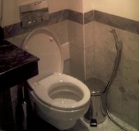 Die Toilette unter dem Rand reinigen - so bekommen Sie den Toilettenrand / Spülrand im WC ganz einfach wieder sauber