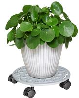 """Esoterisches Design: Pflanzenroller """"Blume des Lebens"""""""
