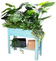 """""""Urban Gardening"""" leicht gemacht!"""