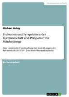 Die Vormundschaftsreform von 2011/2012 - Ein Erfolg?