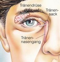 SARS-CoV-2 und Kontaklinsen/ Brille zur Sehfehlerkorrektur