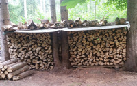 Brennholz: Beim Kauf auf regionale Herkunft achten