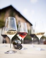 Südtiroler Wein DOC: Große Vielfalt auf kleinem Terrain