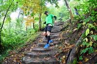 GELITA Trail Marathon HD - virtuelle Teilnahme möglich