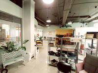 Startup VPLUS habitat startet in Deutschland