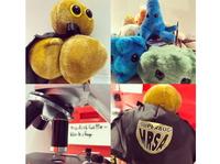 Viren haben Hochkonjunktur auch im Deutschen Museum Bonn