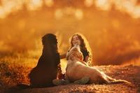 Herbst-Urlaub mit Hund 2020 auf hunde-urlaub.net