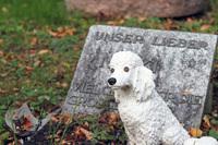 Strenge Vorschriften bei der Bestattung von Haustieren