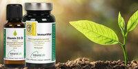 Neurolab® Vital stellt neue Produktreihe fürs Immunsystem vor: ImmunVital und Vitamin D3 Öl