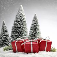 Weihnachtsgeschenke sicher online kaufen
