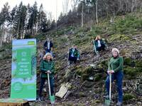 elka-Holzwerke pflanzt Wald für die Zukunft