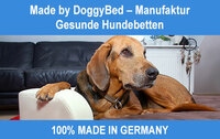 Gesunde Hundebetten - Made by DoggyBed® Manufaktur