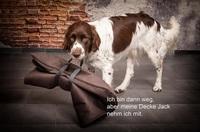 Hundedecken - einfach nur gut!