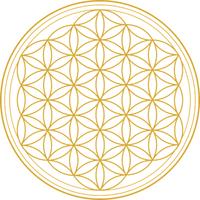 Ayurveda-Konstitution und Ayurveda-Kochkurs - Online