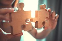 Perfekte Beschäftigung während des Lockdowns - 3D Holzmodelle von MagicHolz