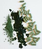 Marine Phytoplankton - Vegane Omega-3 Quelle mit umami Geschmack